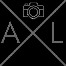 AXL logo Grey